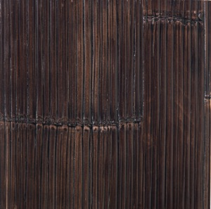 bambus-schwarz
