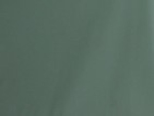 TS-grün
